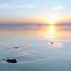 Too Long (Aaron Bieleck) Tags: hasselblad500cm 120film analog 6x6 square film filmisnotdead hasselblad mediumformat wlvf ocean pnw pacificnorthwest oregon coast dof bokeh 80mmct outdoors beach sunset kodakportra160 sun 10mmextensiontube manzanita