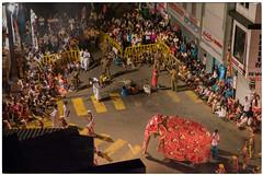 Kandy Esala Perahera (Doede Boomsma) Tags: roadto srilanka 2016 perahera azië vakantie elephant kandy night led crossing festival buddha holy tooth relic
