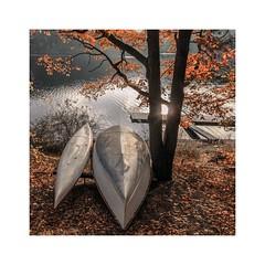 Und, gehen wir noch mal rein? (linke64) Tags: thüringen natur oktober stausee deutschland boote boot wasser rahmen bäume laub herbst strand