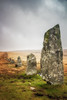 Ancient Monuments (Rich Walker75) Tags: dartmoor devon landscape landscapes landscapephotography landmark landmarks stones stone row ancient historic history prehistoric cloud moorlanmd moorland moors england canon eos100d efs1585mmisusm eos