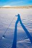 The long-legged skier (harald.bohn) Tags: skiing skier skiløper skygger shadows winter vinter snø snow legs