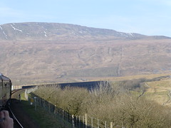 Whernside, seen from The North Briton (Jon Horrocks) Tags: whernside thenorthbriton 66014 60163 tornado settleandcarlislerailway ribbleheadviaduct