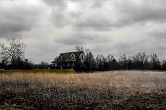 """That's the problem with memories: you can visit them, but you can't live in them."" ―Shaun David Hutchinson ☁️ 🏡 ☁️ (anokarina) Tags: adobephotoshopexpress colorsplash casioexs10 kentucky ky country rural house home field yellow gold clouds bullitt whiskytrail 🏡 ☁️"