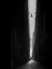 ...finallyarrived... (*ines_maria) Tags: sea lamp perspective atmosphere mood couple urbanexploration urban oldcity venice city lights fassade historic building italy old love enjoy light panasonic dcgh5 venezia blackandwhite bw monochrome street travel travellers