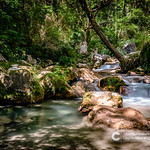 Fast-flowing mountain river in the European Alps thumbnail