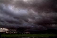 Roézé sur Sarthe (Sarthe) (gondardphilippe) Tags: roëzésursarthe sarthe maine paysdelaloire paysage landscape ciel sky nuages clouds sundaylights