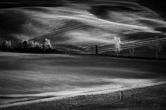 CONTRASTI TOSCANI (daniele romagnoli - Tanks for 20 million views) Tags: toscana italia italy bianconero bw valdorcia paesaggio segni agreste rurale blackandwhite landscape panorama autunno linee romagnolidaniele