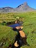 Paso Campanario Sur (Mono Andes) Tags: andes chile chilecentral regióndelmaule volcáncampanario volcanoe volcán volcano