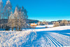 Winter Countryside (bjorbrei) Tags: winter snow frost cold skitrail skitrack field countryside farm trees hills sander maridalen oslo