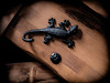Cast Iron, a lizard. (CWhatPhotos) Tags: cwhatphotos cast iron wall mounted lizard black decoration wood photographs photograph pics pictures pic picture image images foto fotos photography that have which with contain mk digital camera lens micro four thirds olympus