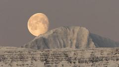 Moon in the morning sky (*Jonina*) Tags: iceland ísland faskrudsfjordur fáskrúðsfjörður moon tunglið mountains fjöll morning morgunn winter vetur snow snjór jónínaguðrúnóskarsdóttir 500views 50faves 1000views
