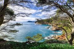 Costa Brava unfolds (TorstenHein) Tags: costa brava katalonien catalunya catalonia landscape landschaft küste brandung surf rocks sea mediterranean mittelmeer meer tree weitwinkel fuji fujifilm xt2 hein