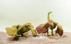 New generation (adam tran) Tags: origami dinosaurs dinosaurtrails2