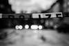 DOII7FI (chipsmitmayo) Tags: nikon f100 nikkor 85mm f14 kodak trix 400 labor schwarzweiss blackandwhite film analog münster westfalen polizei pozilei absperrung flatterband strase sturm friederike lichter