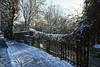 _DSC3938_DxO (Alexandre Dolique) Tags: d850 nikon etampes sous la neige under snow