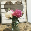 """Those Four Words, The Whole World Over Longs To Hear ....... """" Happy Valentines Day Ya'll """" (~ Cindy~) Tags: whiteandpinkpeonies masonjar noteboard clothespins countertop"""