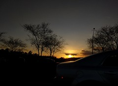 Taken From the Car - 2018-02-15 (photos_by_Henna) Tags: dusk trees sunset sky car takenfromthecar throughthewindshield tree inexplore viewahead 1000views 2000views 3000views 4000views