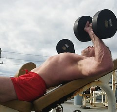 incline dumbbell press (ddman_70) Tags: shirtless pecs chest muscle workout gym incline benchpress