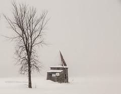 ENCORE L'HIVER (pierre.arnoldi) Tags: pierrearnoldi canon6d canada québec photographequébécois hiver paysage blanc photoderue photooriginale photocouleur tamron