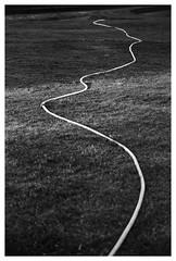 Gallery of Modern Art, Edinburgh. (Robin_Gray) Tags: abstract bw cameras ferraniap30 film galleryofmodernart garden grass hose leica leicam2 lenses minoltamrokkor90mmf4 mono monochrome
