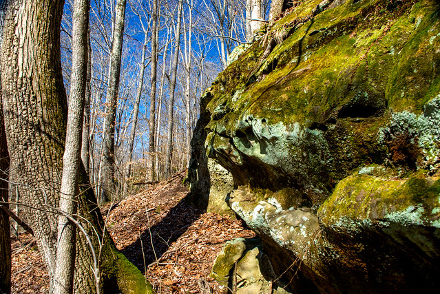 Hoosier National Forest - Hemlock Cliffs - Feb. 26, 2018