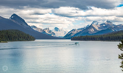 Maligne Lake (Thilo S.) Tags: jasper alberta canada ca maligne lake trees boat mountains rocky rockies canadian cruise national park baum berg see wasser himmel landschaft holz boot fluss bucht heiter schnee wald felsen