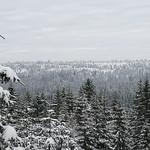 Harz-Oderbrueck_e-m10_1012074060 thumbnail