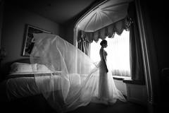 Caroline_Eric_LaV_031.jpg (MaryseCreation) Tags: planner noiretblanc planification web18m 20160903 2016 creationsmarysenoel wedding carolineeric mariée montreal lavimage préparation mariage web18h