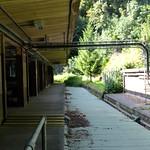 Along the Platform thumbnail