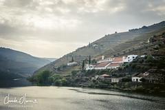Vallée du Douro, Portugal (Claude-Olivier Marti) Tags: porto portugal europe voyage douro unesco vin vigne vignoble nikond850 d850 nikon