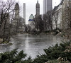 The Ice Covered Pond (Joe Josephs: 3,166,284 views - thank you) Tags: centralpark landscape nyc newyorkcity travelphotography city citypark cityscape outdoors park urbamexploration urban urbanparks travel ice icy pond lake winter winterweather cold freezing outdoorscene
