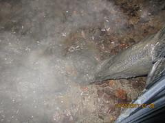 IMG_0207 (ThighBootsinMud) Tags: boots bottes stiefel сапог сапоги ботфорты thigh mud muddy boueux schlamm грязь platform heels каблук каблуки talons boot fetish fetichisme фетиш cuissardes outdoor