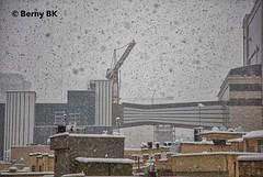 neigeux le temps ce matin  ❄️ ⚧ (bernard78br) Tags: 24105mmf4 5dsr canon eos hiver iran lightroomcc logicielstraitementimage météosaisons neigesnow pays photographie photographiematerieletlogiciels saisons streetphotography tehran téhéran winter