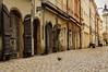 Prague and the pigeon (aksielza) Tags: prague street pigeon
