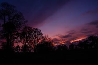 February dusk#1