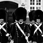 Royal Life Guards thumbnail