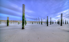 The Matrix. (Alex-de-Haas) Tags: 11mm adobe d850 dutch hdr holland irix lightroom nederland nederlands netherlands nikon noordholland noordzee northsea petten pettenaanzee photomatix photomatixpro beach beachscape exposure hemel landscape landschap longexposure lucht palen pillars poles sand sea skies sky steunpijler steunpijlers steunpilaar steunpilaren strand sundown sunset supportpillars wind winter zand zee zonsondergang