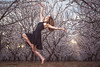 Dancers in the Blossoms (CBAphotographs) Tags: marypattoncba marypatton mary patton fineart dancer almondblosssoms almondblossom elegant stunning dramatic photography photographerinmodesto beauty serenty sweet beautiful facinating bright ballet ballerina action actionshots jumps jumping bodyform drama photodrama modestophotographer