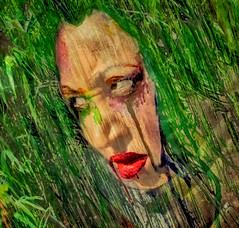 Odd portrait (COLINA PACO) Tags: oddportrait retrato ritratto portrait photoshop photomanipulation franciscocolina fotomanipulación fotomontaje chica girl femme