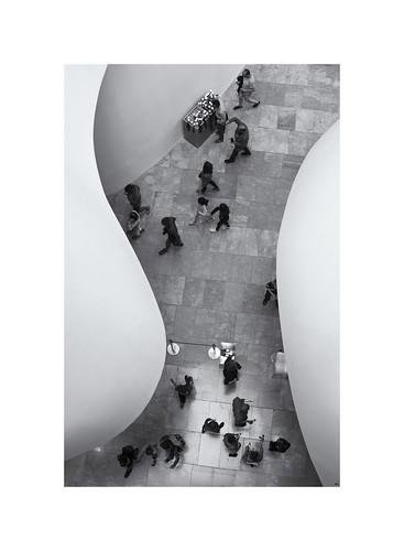 Guggenheim Form