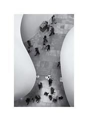 Guggenheim Form (oiZox) Tags: guggenheim forms shape blackwhite blanconegro bw black bilbao blackandwhite blanco euskadi europe indoor interior arquitecture arquitectura monochrome mono monocromatico vizcaya viaggiare museum museo musea modern art