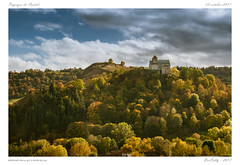 Paysages du Cantal (BerColly) Tags: france auvergne cantal paysage landscape foret forest arbres trees sky ciel nuages clouds monument chateau castle eglise church bercolly google flickr