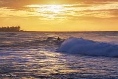 Sunset Surfer (buffdawgus) Tags: surfscape turtlebay seascape canonef24105mmf4lisusm landscape sunset topazsw pacificocean surfer lightroom6 surf hawaiinislands catchingawave hawaii canon5dmarkiii oahu