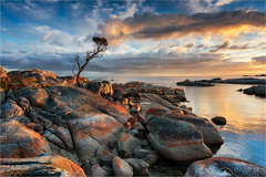 Morning Fire (Maciek Gornisiewicz) Tags: binalongbay bayoffires tasmania australia shore coast granite lichen nature landscape seascape morning dawn sunrise tree clouds rocks relfections travel canon nisi 1635mm 5div maciek gornisiewicz darkelf photography morningfire 2018