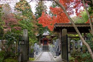 東福寺 Tofuku-ji Temple