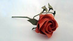 Show Your Love of Paper Folding with some Beautiful Valentines Day Origami (Origami.me) Tags: origami papercraft papercrafts craft crafts paper diy fold folding valentinesday valentine valentines romantic love