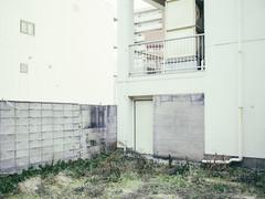 TS-E45mm TEST Shot (masaru_yamamoto) Tags: hasselblad x1d x1d50s