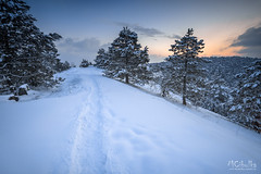 Winter (MarioCibulka) Tags: mountain landscape forest winter path season snow hill sunset natural tree view sunlight clear cold covered white outdoors weather light colorful frost countryside horizon journey relaxing adventure peak travel