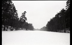81 (PaulaJanso) Tags: 35mm sky snow forest lake