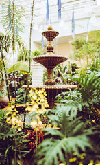 Warm Fountain (Jeff.Hamm.Photography) Tags: bokeh pano panorama panoramic saintlouis stl missouri mo mobot missouribotanicalgardens orchidshow botanicalgarden fountain water design park decoration modern splash architecture drop flow ornament stream isolated decorative garden spray urban city liquid abstract stone element tourism view travel simple beautiful vintage color vacation
